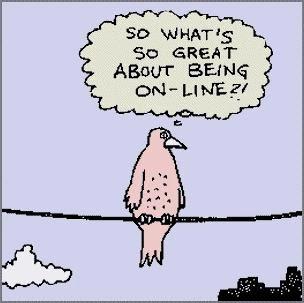 Mindful birdie on-line